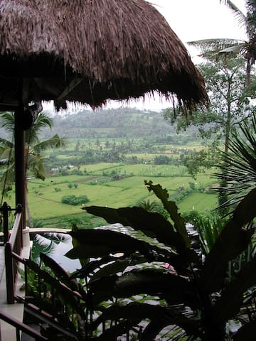 Kubu Carik Bali - Kelod - Abang