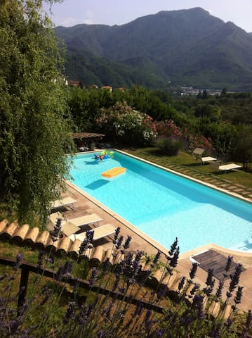 A LOFT IMMERSED IN NATURE WITH POOL - Borgo a Mozzano - Loft