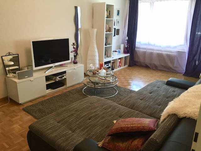 Beautiful spacious apartment in Zurich - Zürih - Daire