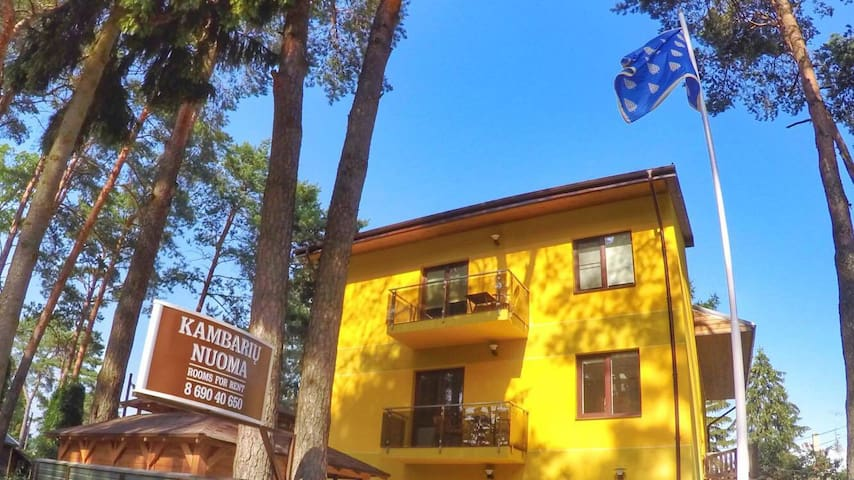 Cozy rooms in the pine forest house - Kaunas District Municipality