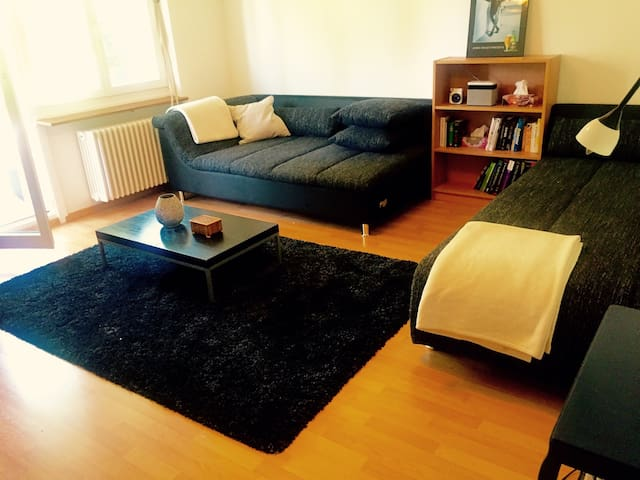 Two room apartment Zurich beautifully located - Zürich