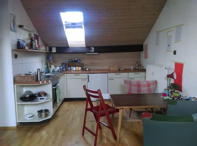 Großzügige Einzimmerwohnung unterm Dach - Karlsruhe - Departamento