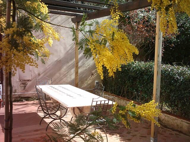 Apartment inside Villa Corliano - Rigoli - Wikt i opierunek