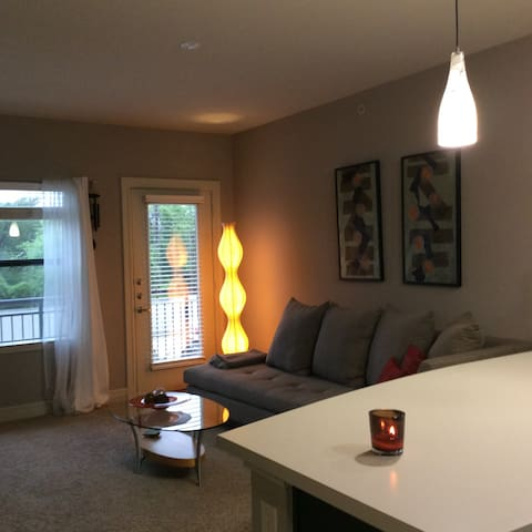 Great Apartment in a Perfect Location! - Addison - Daire