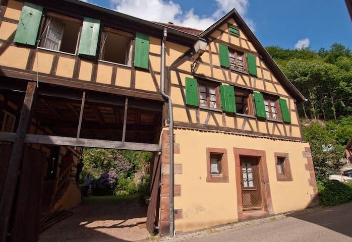 Alsace holiday house with garden - Oberbronn - Casa