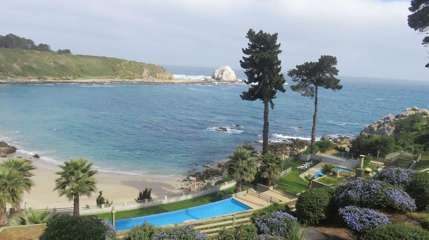 Dpto vista al mar playa Canelillo, Algarrobo - Algarrobo - Apartment