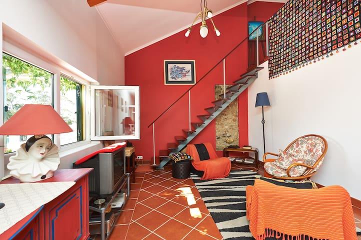 """""""CROCOS' HOUSE"""" - Casa de Campo - Runa - Villa"""