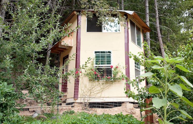 """""""Witch's Hut"""" Off-Grid Forest Cabin - Gasquet - Houten huisje"""