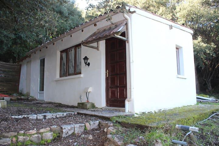 Petite maison dans le maquis avec vue mer. - Porto-Vecchio - Casa de férias