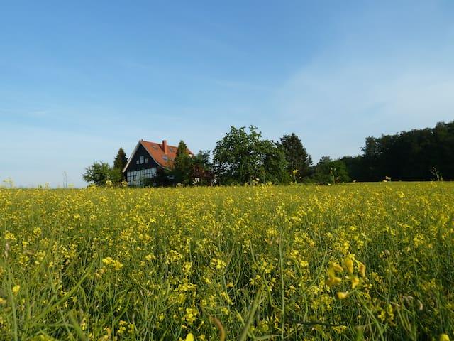 FeWo bei-veronica im Herzen des TW - Borgholzhausen - Leilighet