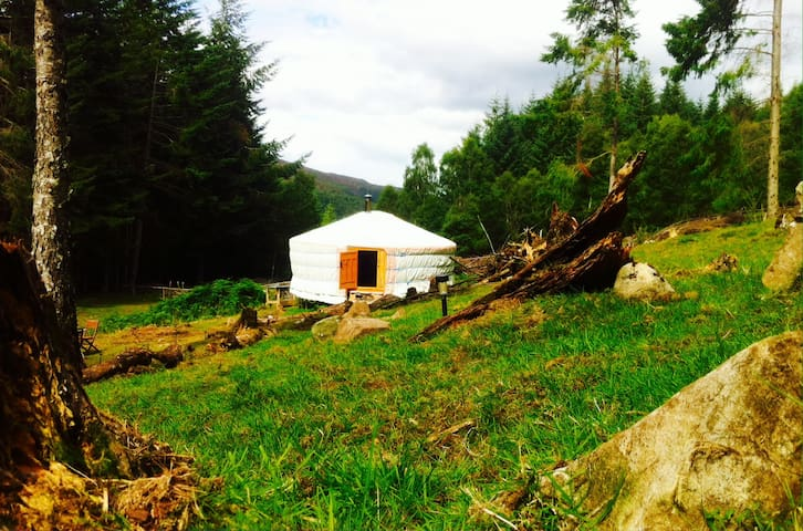 Beautiful yurt in a secluded forest setting - Highland - Yurt