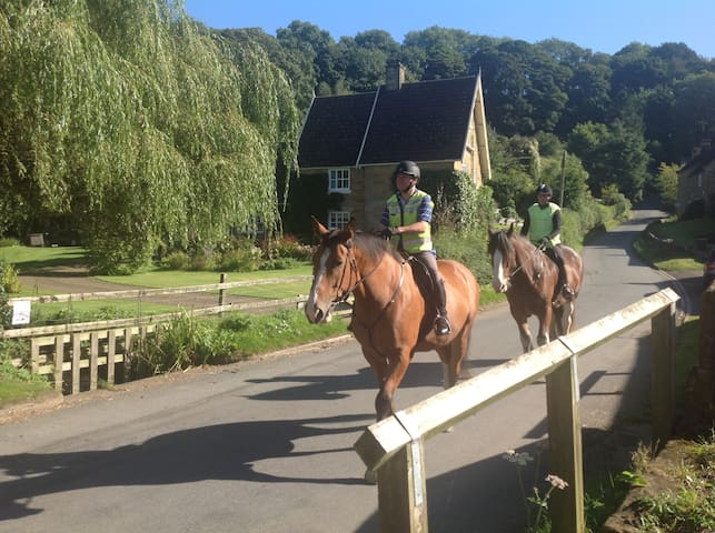 Lark Rise Cottage, BHS Horses welcome - Boltby - Ház