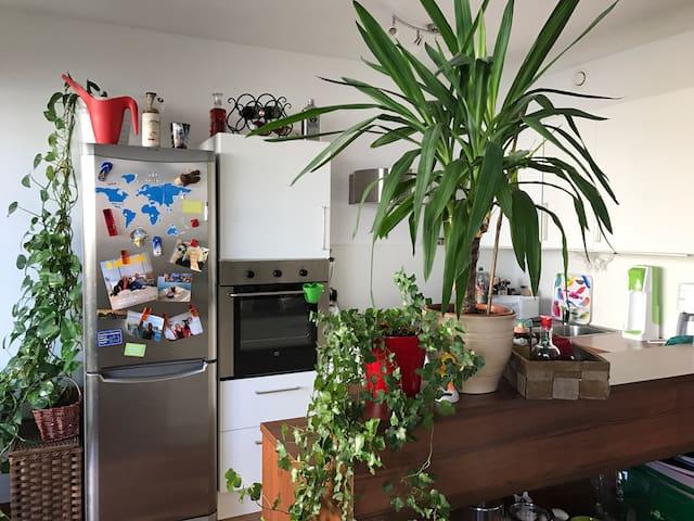 Gemütliche 65m2 Wohnung mit Garten - Scheibbs