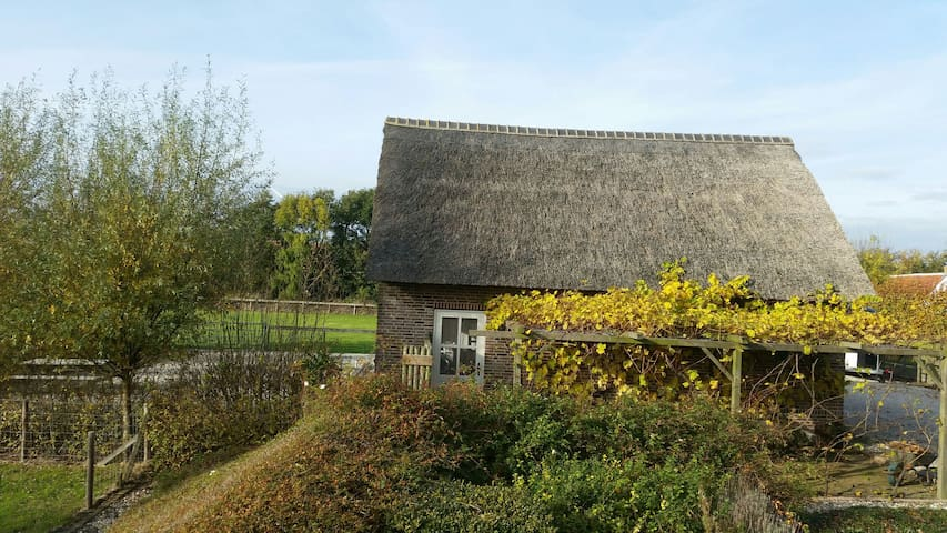 Charming and comfortable selfcontained studio - Burgh-Haamstede