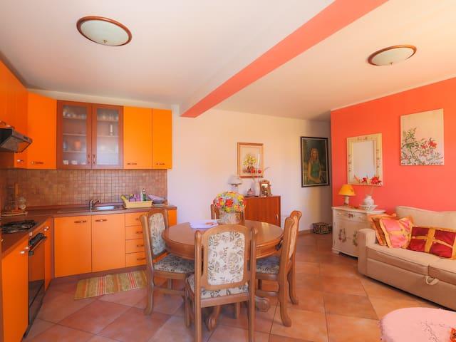 NB1 Apartment with air condition - Bašanija