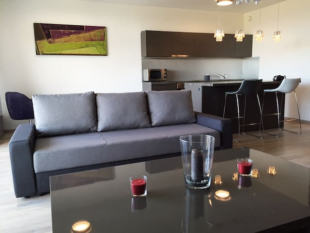 Modern and comfy flat close to airport - Meyrin - Huoneisto