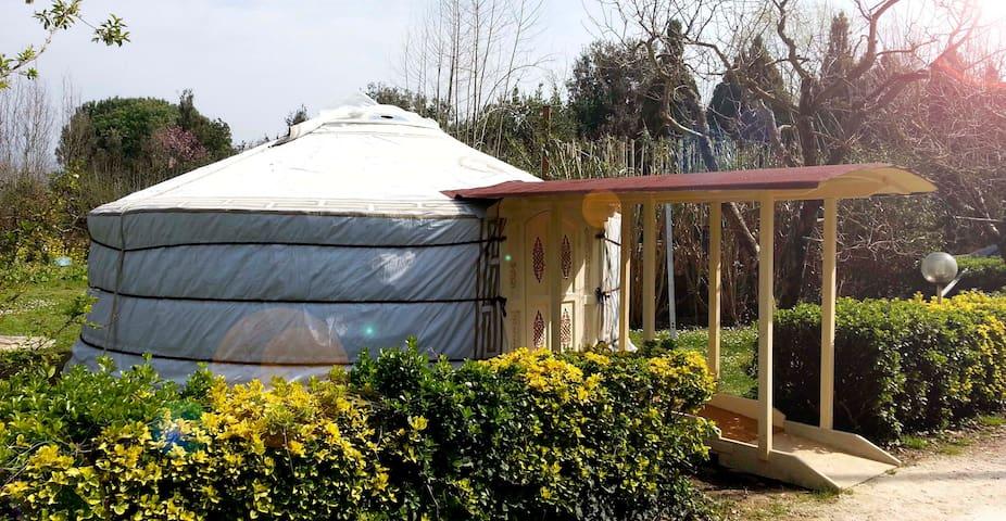 Yurta Originale Mongola nella Natura Versiliese - Pietrasanta