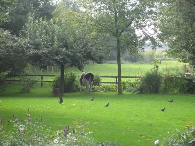 Space and privacy close to Veluwe 1-4 people - Angerlo - Daire