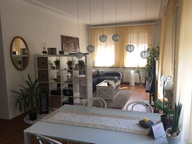 Beautiful & cosy apartment - Malters - 公寓