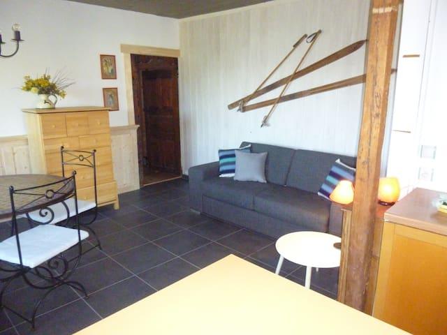 Lovely house with garden in the Alpes - Mont-Saxonnex - Apartamento