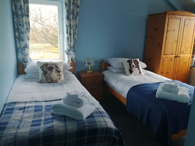 Ty Newydd bed and breakfast - Carmarthenshire - Bed & Breakfast