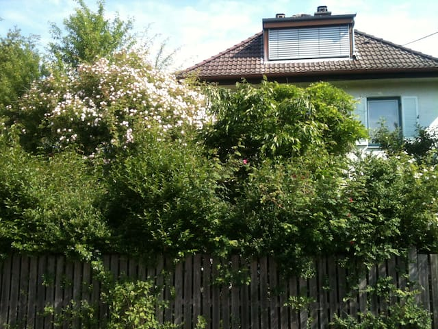 Charming 1 1/2 room apartment Herrsching a.A (MUC) - Herrsching am Ammersee - Hus