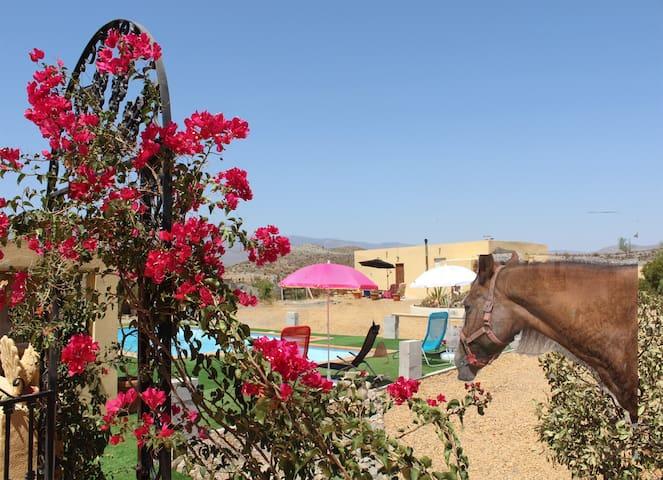 Peace and quiet in Tabernas Desert - Tabernas - Departamento