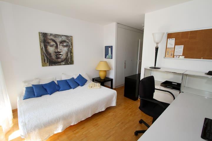 CHARMING, LIGHT ROOM close Geneva - Nyon - Appartement