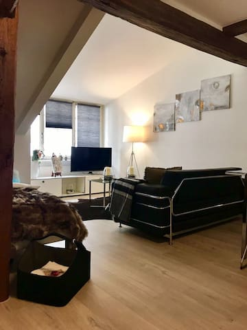 Luxury Apartment in the heart of the city centre - Winterthur - Lägenhet