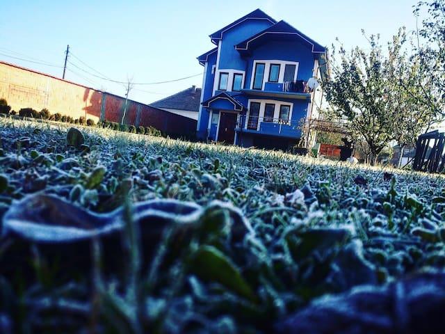 Beautiful blue house with a big garden - Koretin - Rumah