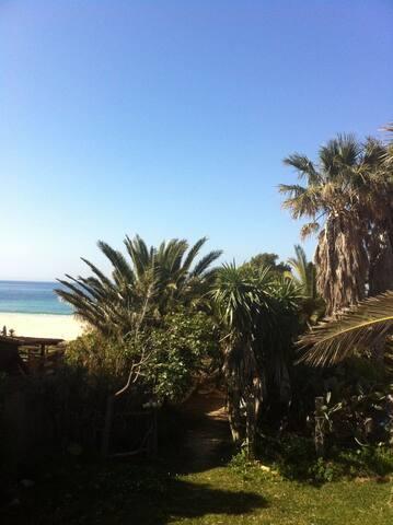 Bungalow en la playa de bolonia - Playa de Bolonia - Hus