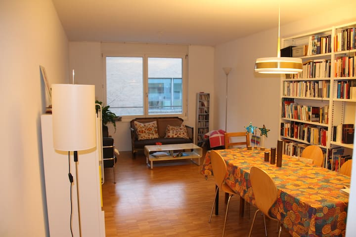 Quiet, sunny appartment in the heart of Kleinbasel - Basileia - Apartamento