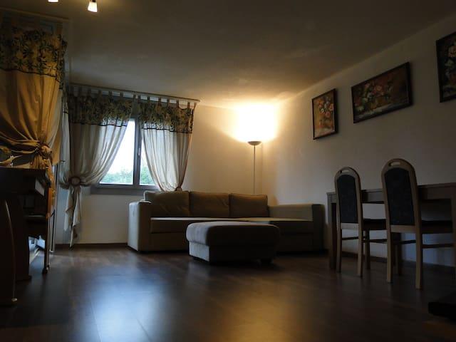 3.5 room Apartment in Villmergen - Villmergen - Departamento