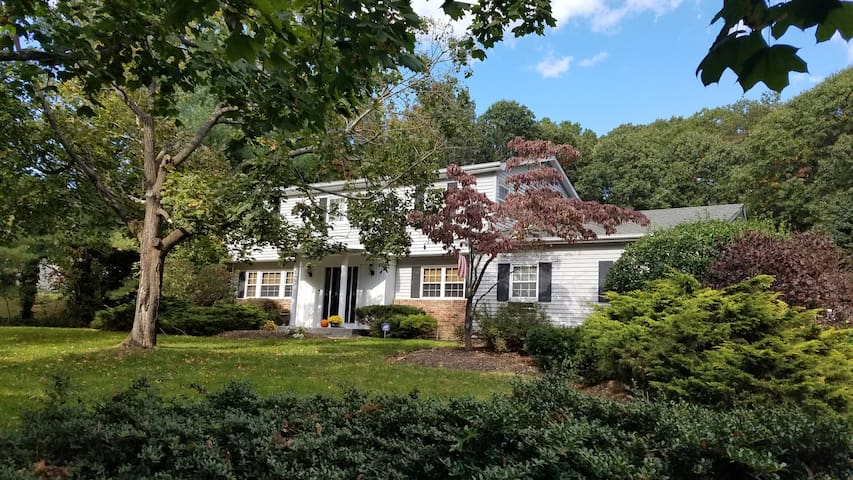 Large Family Home in Dix Hills - Dix Hills - Maison