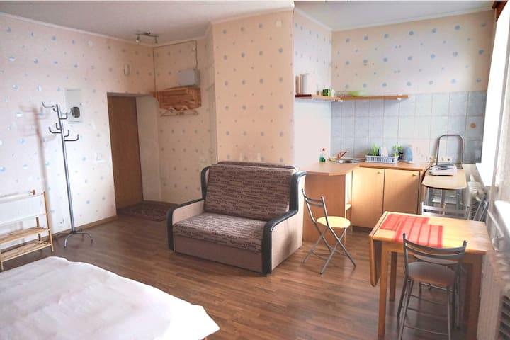 Апартамент Erfolg 5 - Daugavpils - Lägenhet