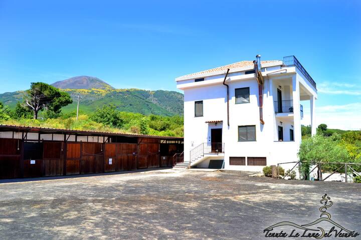 Casa M sul Vesuvio a 5 Km da Pompei - Terzigno - Daire