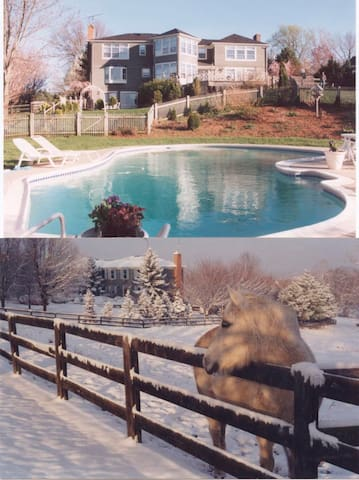 Monet Suite, elegnt lrg 2rm suite/blcny in villa - Purcellville