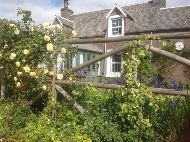 Ivy cottage. Crieff - Crieff - Dom