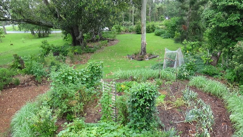 North Lismore bed with Breakfast -  Lismore - Hus