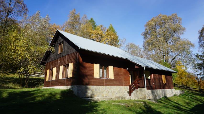 Dom w Uhryniu - Uhryń - Дом