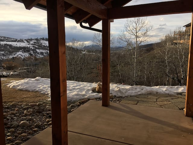 Private, Quiet, One Bed Room with a Great View - Steamboat Springs - Appartement