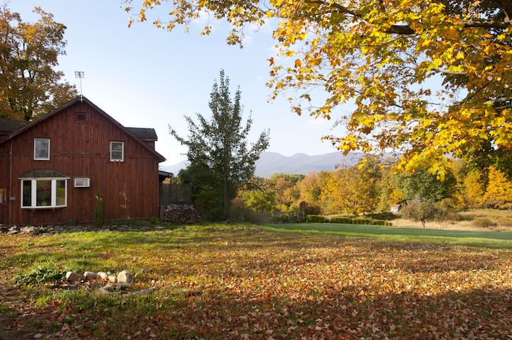 Cozy Farmhouse, Catskill views! - Freehold