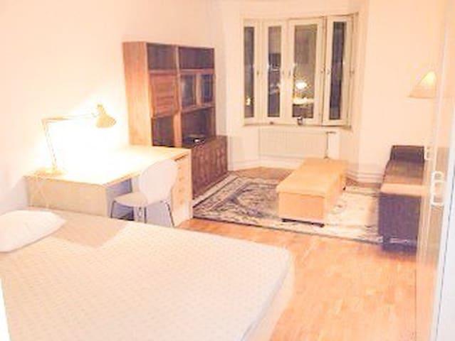 HUGE room, very heart of Stockholm! - Estocolmo - Departamento
