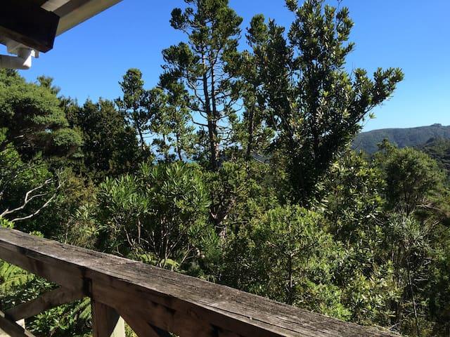 Lone Kauri Cabin - Karekare