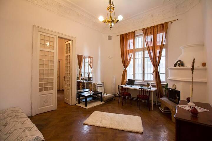 Cosy apartment in villa located in city center - București - Rumah