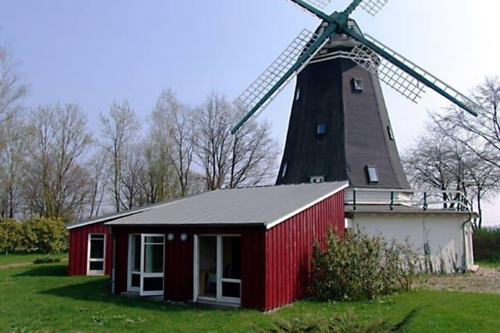Sie suchen das Besondere? Historische Windmühle - Siek - Overig