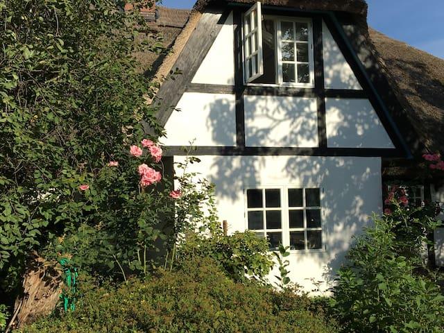 Historisches Traumhaus (Müritz) - Leizen - Hus