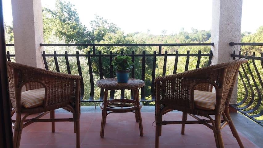 A comfortable room with private bathroom & balcony - Montecarlo - Villa