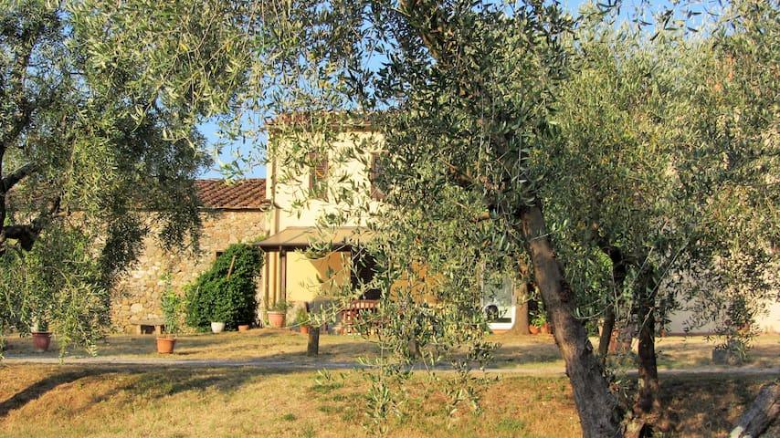 Authentic tuscan paradise - Capannori - Casa