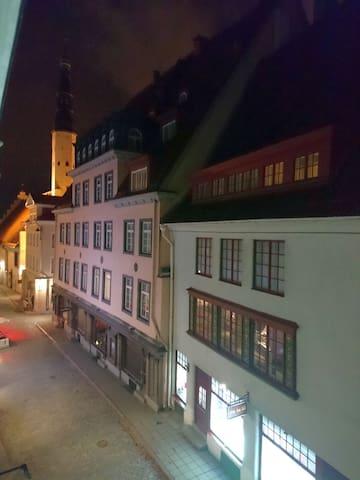 Old Down apartment. The best place in Tallinn! - Tallinn - Wohnung